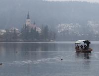 isolotto di Bled e pletna