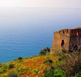 Cosa vedere in Calabria: Cetraro