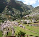 Gran Canaria: Aguimes ed il Barranco de Guayadeque