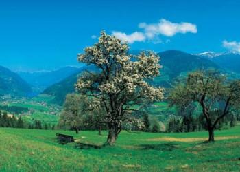 Austria paesaggio