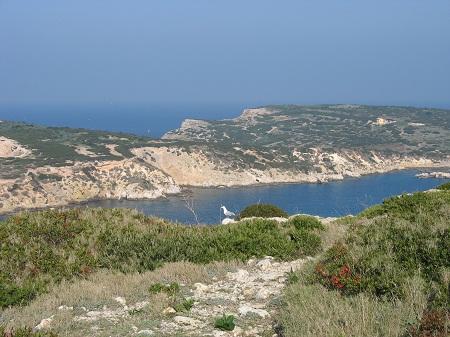 Isole Tremiti - Capraia vista da San Nicola - autore Cristina De Vita