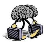 Italia, in costante ascesa la fuga di cervelli dal Bel Paese