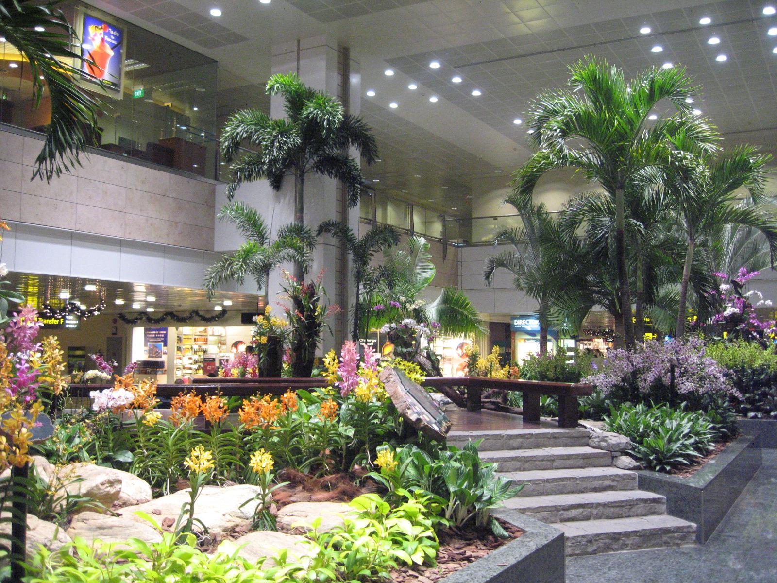 Giardino nel Terminal 2