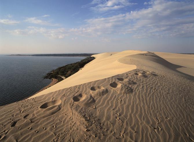 Dune di sabbia in Lituania