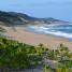 Vento del Sud #3: Elephant Coast