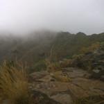 Freddo a Tenerife