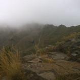 Cosa evitare a Tenerife