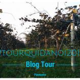 #TourQuiDaNoi2014 alla scoperta del Piemonte