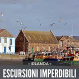 5 imperdibili escursioni in giornata da Dublino
