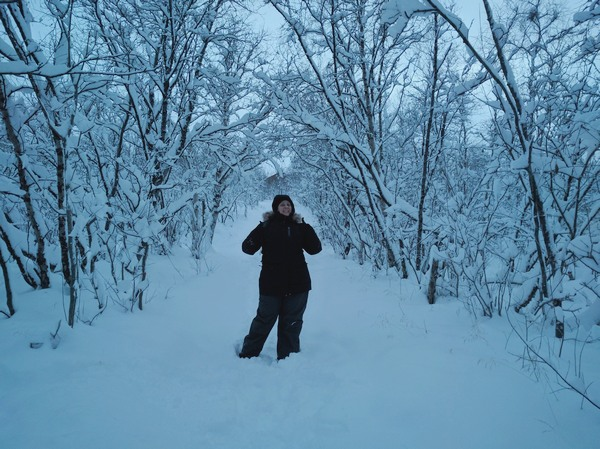 passeggiata-nel-bosco-abisko
