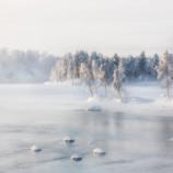 Lapponia, Cosa Vedere e curiosità nella Terra di Babbo Natale